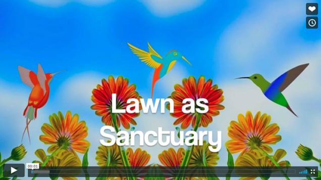 Lawn as Sanctuary, by Doc Hall, Compression Institute (Video 5 minutes)