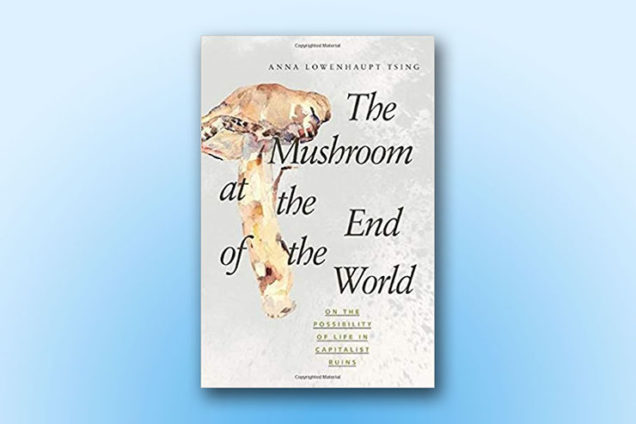 The Mushroom at the End of the World: On the Possibility of Life in Capitalist Ruins, by Anna L. Tsing